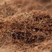Coco Peat Baler | Coir Dust Baling Machine | Coir Fiber Pith Compactor