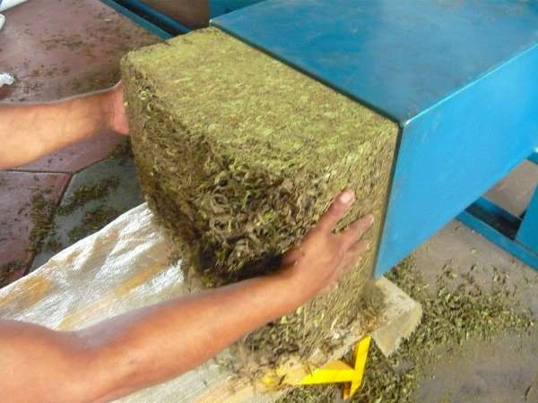 Stevia Leaves Recycling