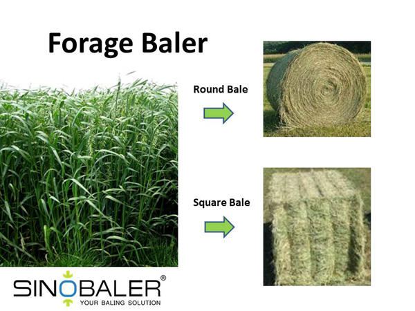 Forage Baler in Forage Recycling