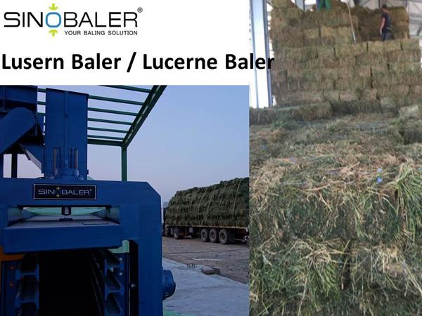 Lusern Baler / Lucerne Baler