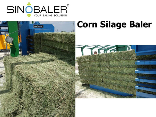 Corn Silage Baler Machine / Baling Corn Silage