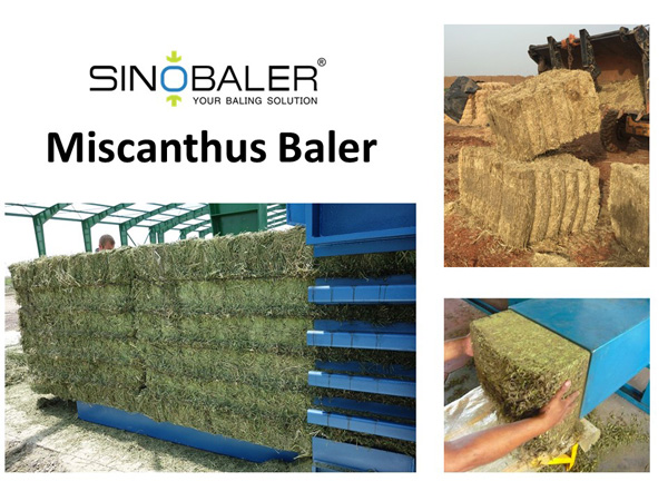 Miscanthus Baler / Elephant Grass Baler Machine