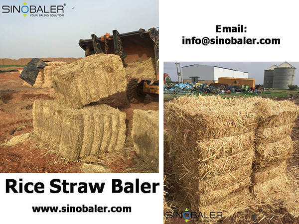 Rice Straw Baler Machine