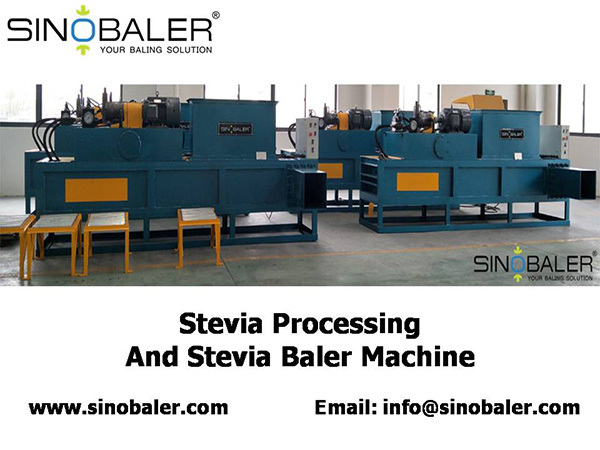 Stevia Processing and Stevia Stem Baler Machine