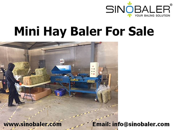 Mini Hay Baler For Sale