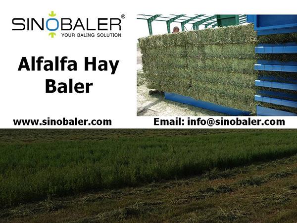 Alfalfa Hay Baler Machine