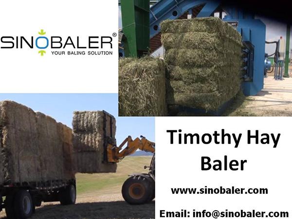 Timothy Hay Baler Machine